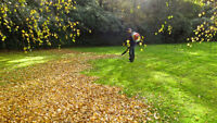 LEAF CLEANUP / EAVESTROUGH  / SNOW CLEAR /  613-766-6062