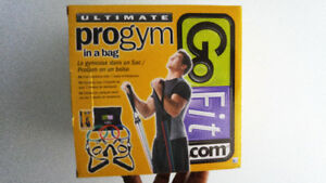 ultimate pro gym in a bag