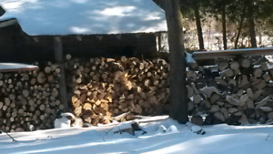 FIRE WOOD FACECORD 140$ (DELIVERED)