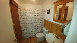 LARGE BRIGHT ONE BEDROOM ON MAIN FLOOR. Amherst, NS