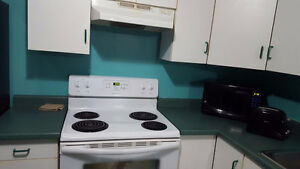 Furnished 2 rooms for Rent opposite to Conestoga college (1 min) Kitchener / Waterloo Kitchener Area image 9
