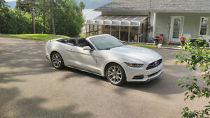 2015 Ford Mustang Coupé (2 portes)