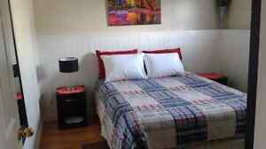 Cheerful 1 BDRM BSMT APT 5 mins to St. John's.