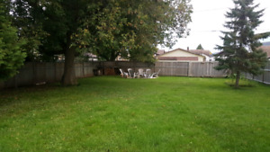 2 bdrm house for rent-Westfort/Hyde Park area