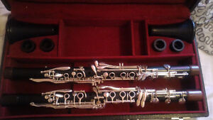Professional HandMade Luis Rossi Clarinets A & Bb