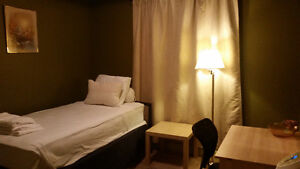 room for nightly rate available for short  term renter Edmonton Edmonton Area image 1