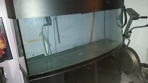 200 Gallon Fresh / Salt Water Aquarium Bow Front w/ Cabinet!