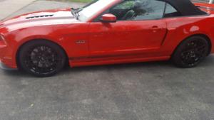 Mustang Gt California Special Convertable 2014