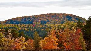 Terrain en montagne de 7,5 acres avec vue panoramique