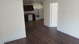 2 Bedroom 1 bathroom available immediately on Spring Garden Road