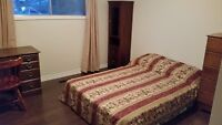 Room Available With Bus Stop Out Front and Possible 8 month Leas