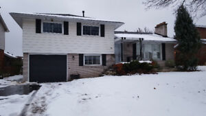 Near Mohawk college/HSC  with brand new renovated house for rent