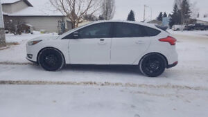 Looking for someone to assume lease- 2016 Focus Hatchback SE
