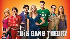 Big Bang Theory - Seasons 1-10 Kitchener / Waterloo Kitchener Area image 1