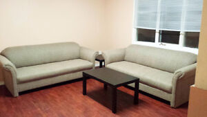 All Inclusive Student Rental 2-3 BR For the Winter & Summer! Kitchener / Waterloo Kitchener Area image 2
