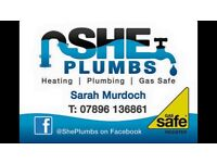 Plumber with gas safe