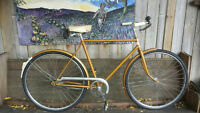 Single Speed Rapdio Cruiser by Lumpy Bikes