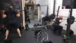 Professional Personal Training Kitchener / Waterloo Kitchener Area image 6