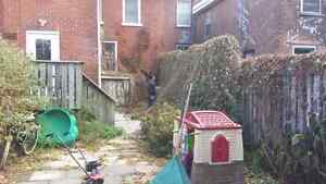 Cheapest rates around, brush removal,and more free estimates Belleville Belleville Area image 4
