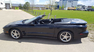 Gorgeous 2000 Firebird Trans Am Convertible