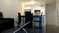 NEW 3 1/2 FULLY FURNISHED Condos For Rent in heart of downtown!!