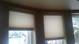 Accordion and roller window blinds
