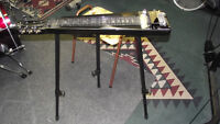 Steel guitar and Fender amp. New, complete package.