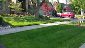 ABsodding - SOD Fence Deck since 2008 online 24/7 - 10 YEARS