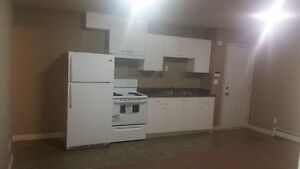 1 BR Bsmt Suite Available for November 1st for 1 Occupant $750