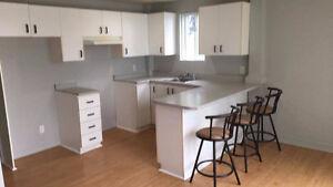 Appartement près du centre-ville (2 1/2 - Chambre ouverte) Lac-Saint-Jean Saguenay-Lac-Saint-Jean image 1
