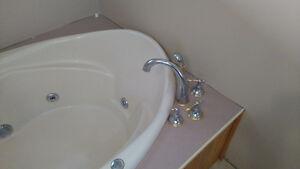 Jacuzzi tub,  sink, vanity and mirror for.sale Belleville Belleville Area image 1