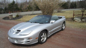 Looking to store my trans am in heated garage or underground