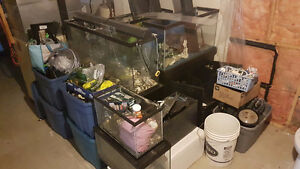 Aquarium Equipment from Hobby Breeder