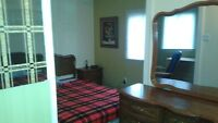 LARGE FURNISHED BEDROOM WITH PRIVATE ENTRANCE.