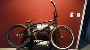 Mike Taylor BSD build 550 obo
