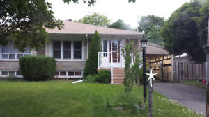 Renovated, sweet basement in best location of Richmond Hill