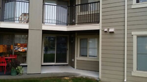 Brand new condo for rent on main floor