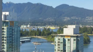 Ocean View! Utils included, furnished suite in Coal Harbour DT!