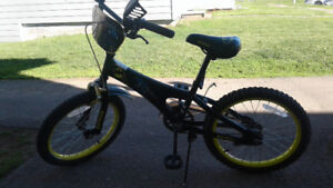 Boys 18 inch bike used one summer , brand new tire on the back