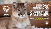 Zoo's Sunday Winter Openings/Les ouvertures d'hiver au Zoo