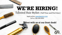 Hiring talented hair stylist!