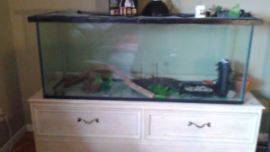 $125   120 gallon turtle tank with stand midland