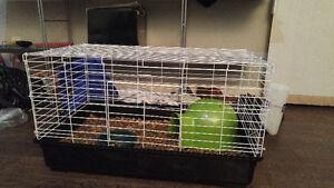 guinea pig bunny rabbit chinchilla cage
