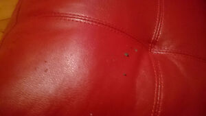 Red Bonded Leather Couch St. John's Newfoundland image 2