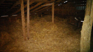 Free older hays and straws for construction or anything else...