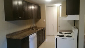Newly Renovated 3 Bedroom Condo in Weyburn