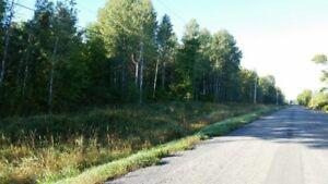 25 acre lot for sale