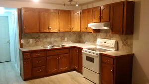 Newly Renovated One Bedroom Walkout Basement Apartment