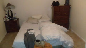 Room Sublet Kitchener / Waterloo Kitchener Area image 1
