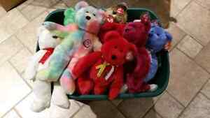 Massive Lot of TY Beanie Babies and Buddies Windsor Region Ontario image 4